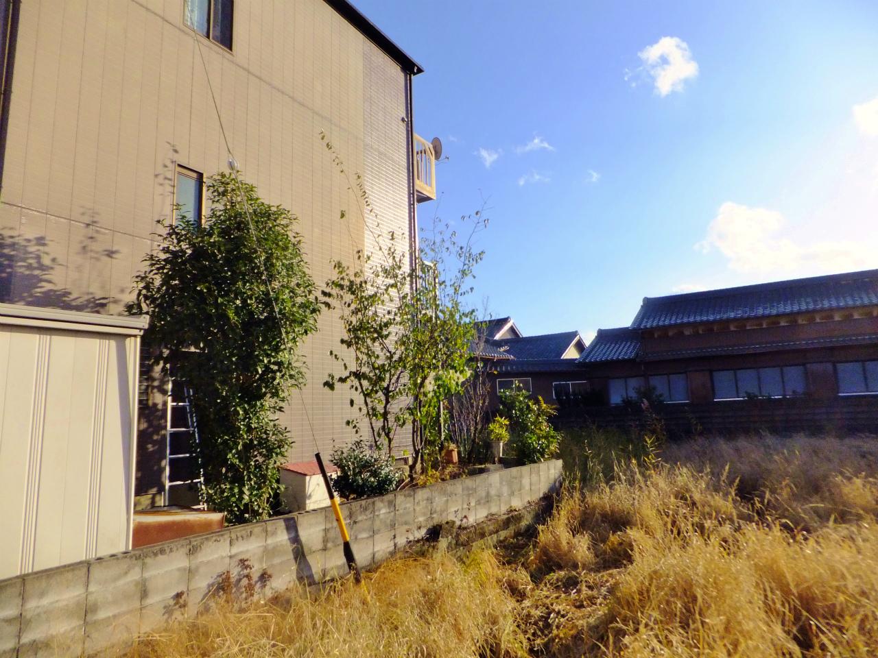 庭木の伐採 愛知・名古屋の庭師
